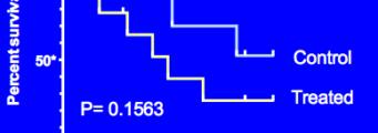 survival-341x120 Prism Analisi Interattiva e Visualizzazione Prism Prodotti